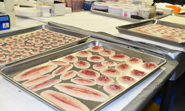 Wound simulation manufacturing and production