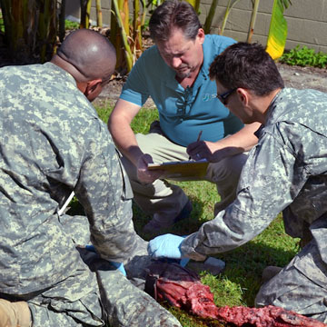 Medical Training Services by SIMETRI